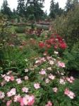 r.garden