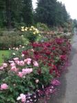 ro garden